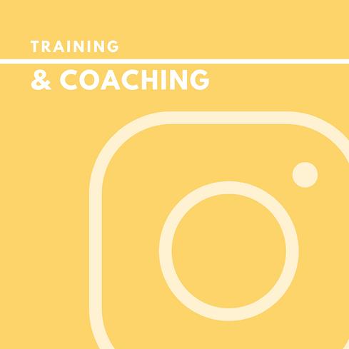 training_website.png