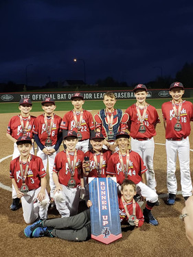 11U Red Leather and Lumber 2nd Place