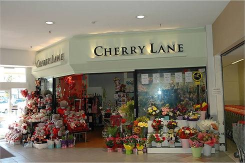 Cherry lane.jpg