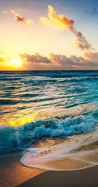beach-2836300_1280.jpg