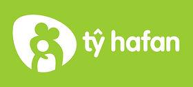 Ty Hafen web header template.jpeg