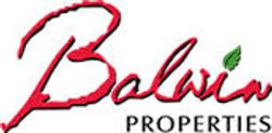 Balwin