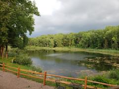 lake view moody_edited.jpg