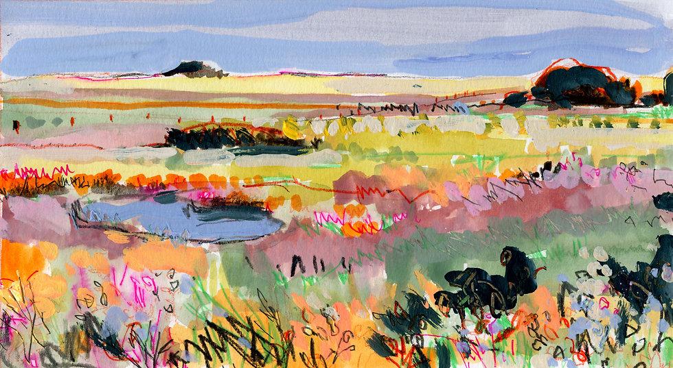 Prairie Sketch 12
