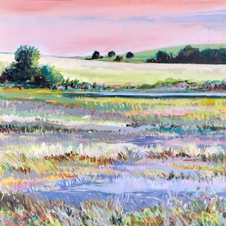 Wetland_JLMOHRART.jpeg