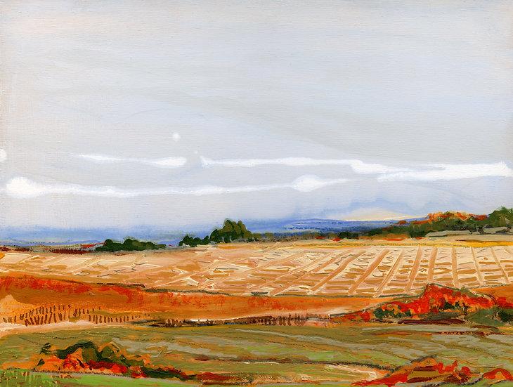 Fine Art Print - Imagined Landscape 36.20