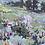 """Thumbnail: Smokey Day At Glenbow Ranch I, 20x16"""""""