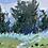 """Thumbnail: Exploration, 15x11"""" (paper)"""