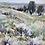 """Thumbnail: Smokey Day At Glenbow Ranch VI, 30x24"""""""
