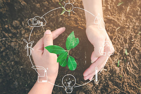 seedling-growing-from-fertile-soil-was-gently-encircled-with-hands-concept-of-environmenta