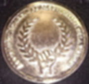 Medalla de Oro Asociacion Española de Profesionales de la Imagen