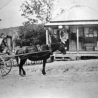 Office at Tallebudgera, Trees Rd 1900