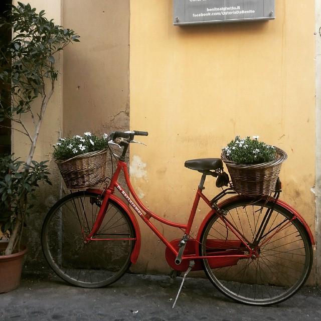 Gula in Roma