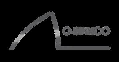 logo_lo-bianco_fundotransparente (1).png