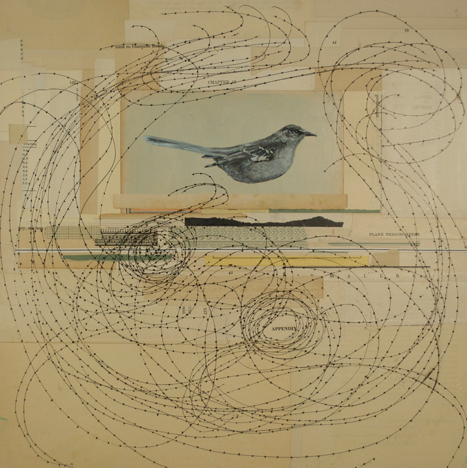 "Appendices Painted Bird, Pen and Ink, Antique Paper on Board 16""x 16"""
