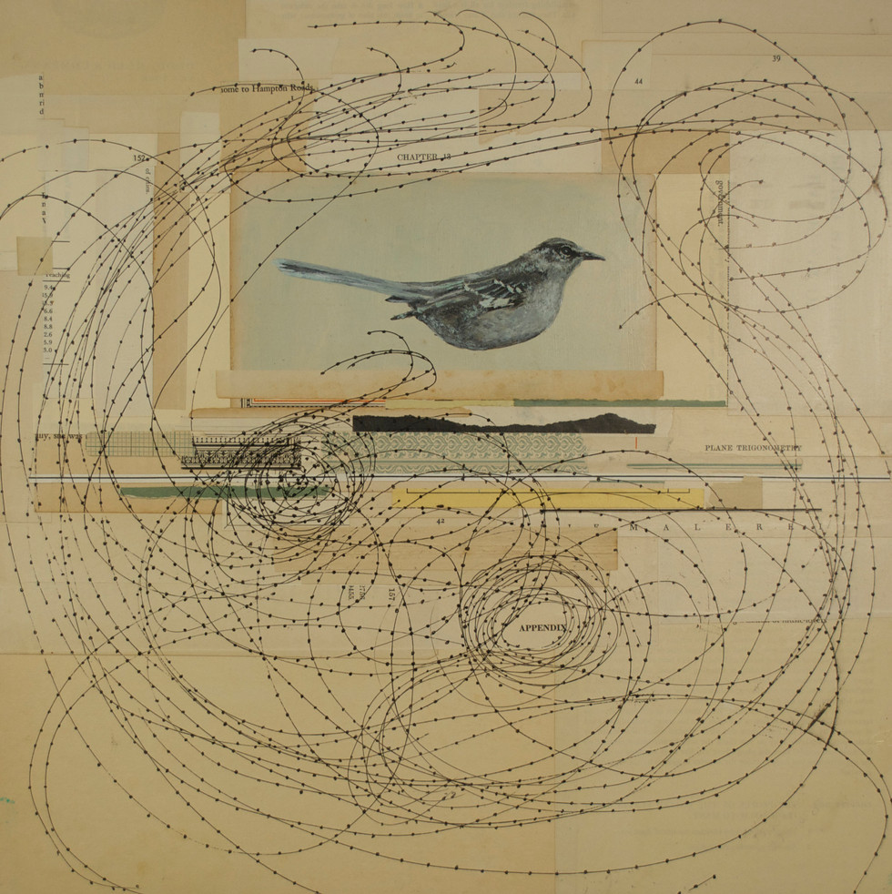 """Appendices Painted Bird, Pen and Ink, Antique Paper on Board 16""""x 16"""""""