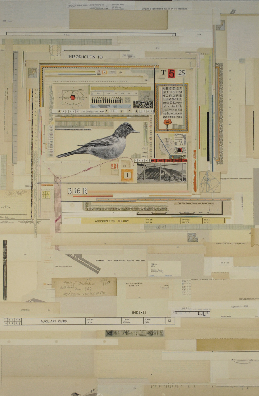 """A Theory of Me Painted Bird and Antique Papers on Board 36"""" x 24"""""""