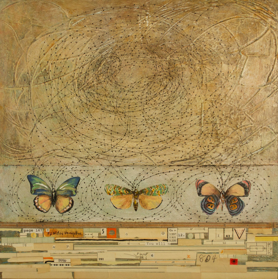 """The Linear Path Painted Butterflies, Pen and Ink Drawing, Collage, and Acrylic Paint on Canvas 12"""" x 12"""""""