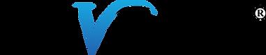 LSVT BIG logo png.png
