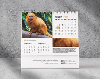 Calendario-Quint-2020-4.jpg
