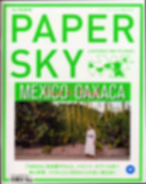 PaperSky_1_web.jpg