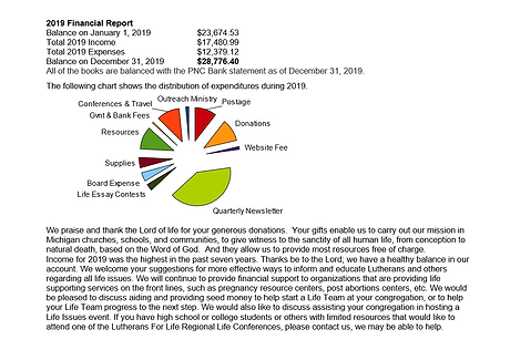 2019 Financial Report.PNG
