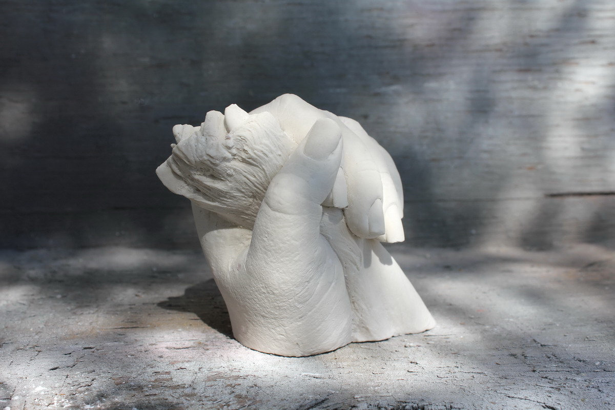 3D Paw Cast with Owner's Hand