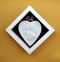 Cali paw cast.jpg