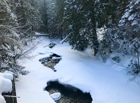 Deep Creek, Idaho, USA