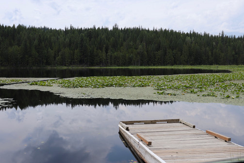 Dawson Lake, Bonners Ferry, Idaho, USA