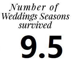Wedding Seasons Photographer team island