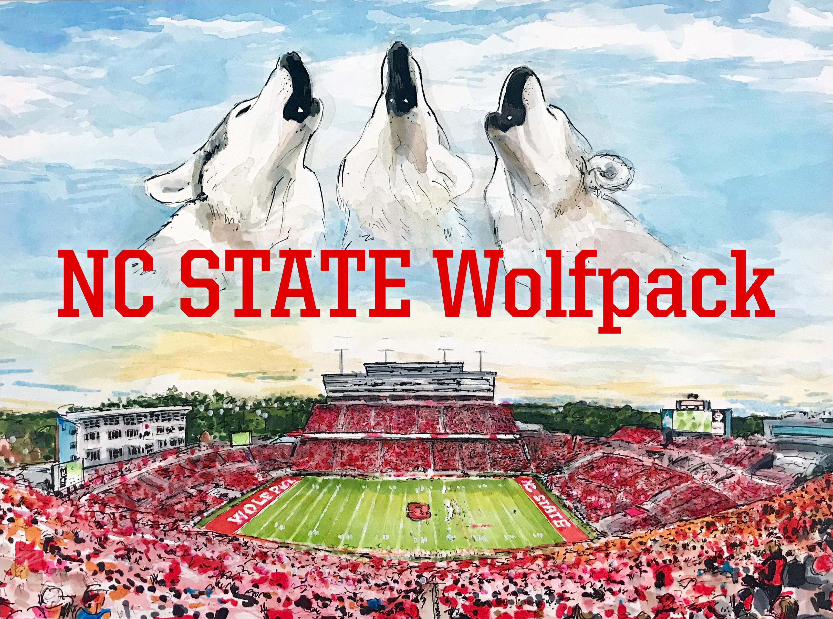 NC State - Carter-Finley Stadium