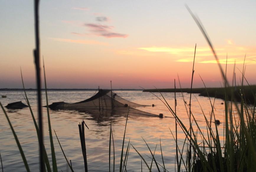 Sunrise and fyke nets