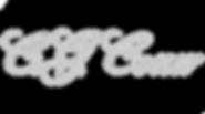 cg-conn-logo-argent.png