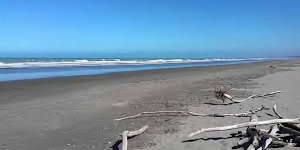 Beach/Track Ride (2 x options)