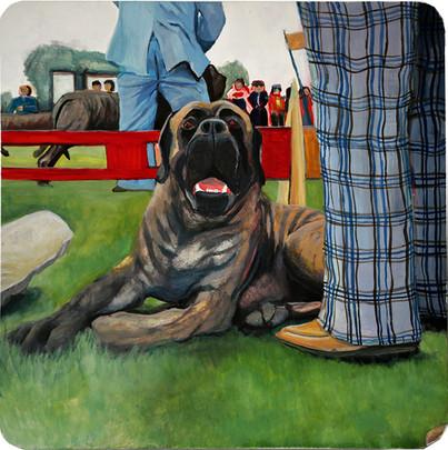 Mastiff, Trenton Dog Show of 1979
