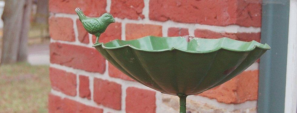 Vogeltränke Matz grün
