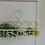 Thumbnail: Landhaus Wandkorb EMMA in weiß, Shabby antique Chic, Metall 30 cm