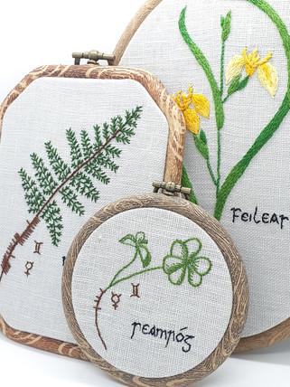 Irish Wildflower Series
