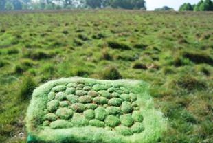 Irish fields textile art