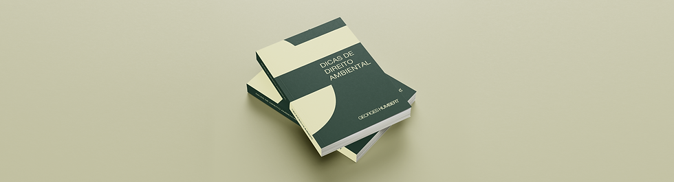 LIVRO GEORGES_SITE.png