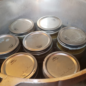 Part 3: Preserving Your Home-Made Stock