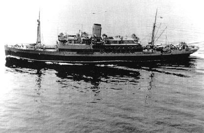 WWII War-Bride – Ieda Herman