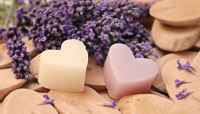 lavender-2443210_1920.jpg