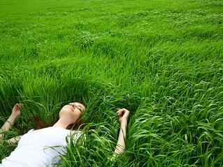 blog girl laying grass.webp