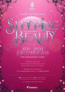 Sleeping_Beauty_Concept_V2.jpg
