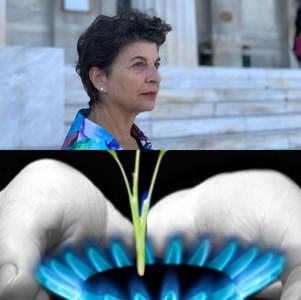Απαράδεκτος αποκλεισμός του Νομού Χαλκιδικής από την πρόσβαση στο φυσικό αέριο.