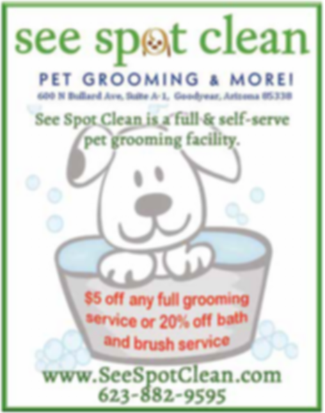 See Spot Clean_Advert Mar2019.png