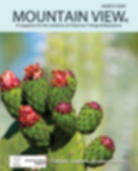 Mountain View_Mar2020.png