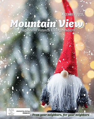 Mountain View_Cover Dec2020.png